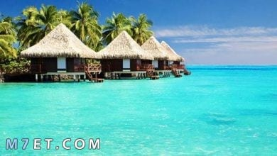 Photo of اين تقع جزر المالديف الساحرة