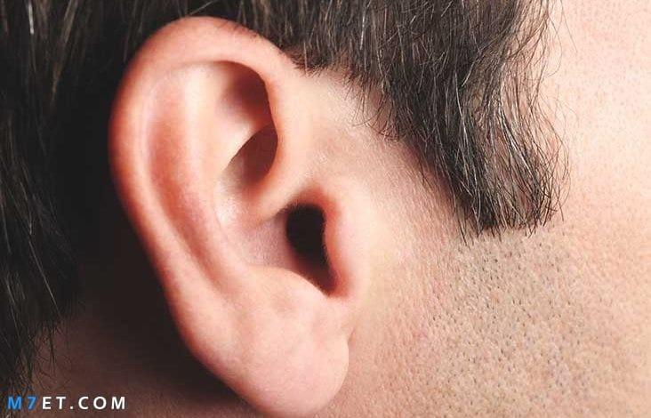 أعراض التهاب الأذن الوسطى عند الكبار