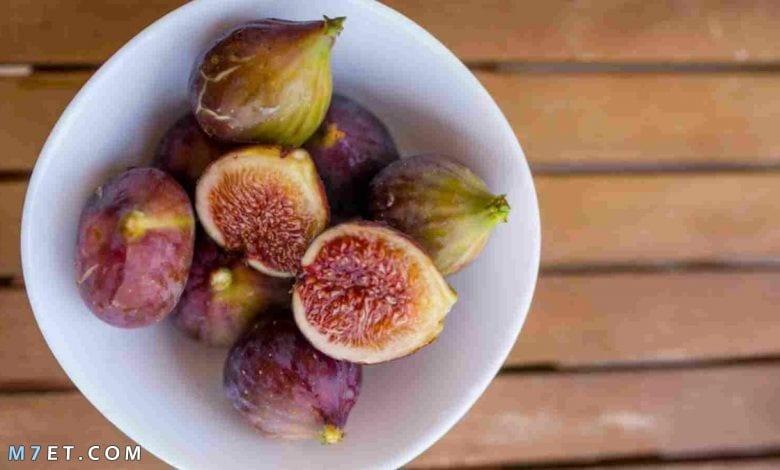 طريقة زراعة فاكهة التين في الاردن