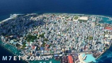 Photo of مدينة مالي في جزر المالديف وأشهر المعالم السياحية بها