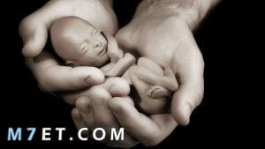 كيف اعرف ان الجنين قد نزل بعد الإجهاض