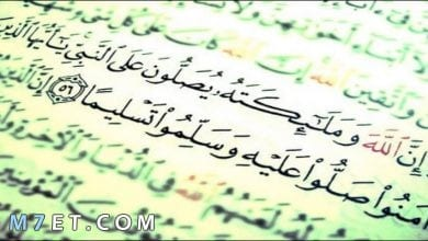 Photo of معلومات عن الرسول صلى الله عليه وسلم
