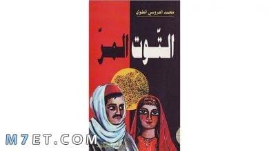 Photo of تلخيص قصة التوت المر وعودة الوعي التونسي