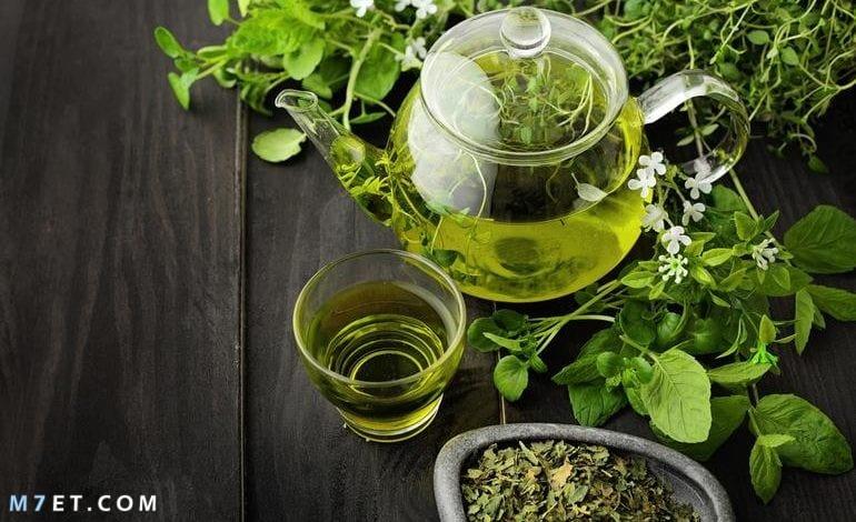 أهم فوائد الشاي الأخضر للبشرة