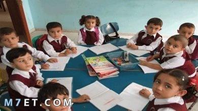 Photo of تطوير المناهج الدراسية للمرحلة الابتدائية