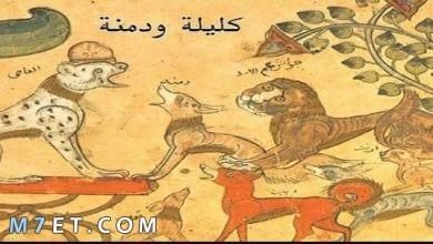Photo of قصة كليلة ودمنة