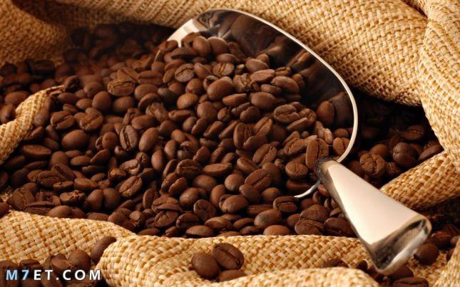 ماسك القهوة للبشرة الدهنية