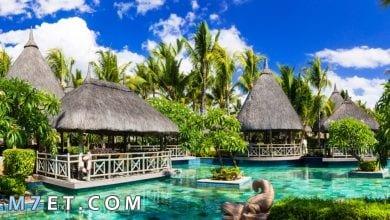 Photo of أفضل 5 مواقع سياحية في أفريقيا