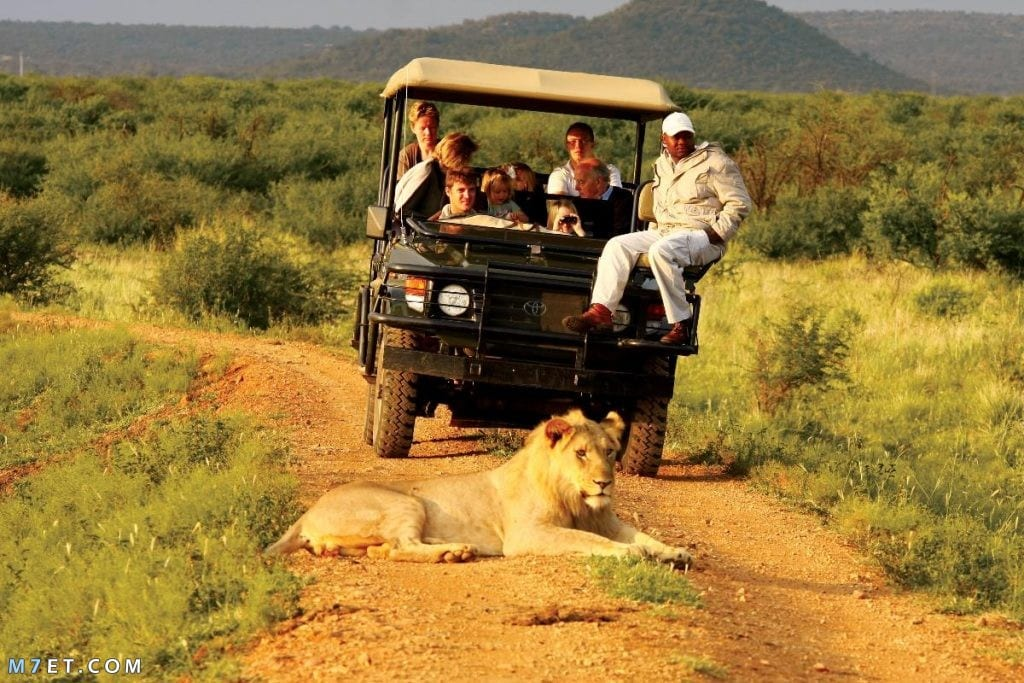 أفضل 5 مواقع سياحية في أفريقيا