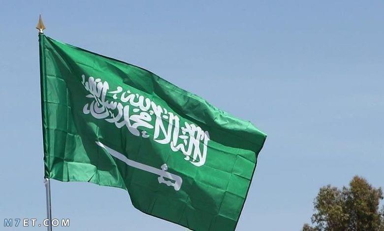 مشاريع ناجحة في الاقتصاد السعودي