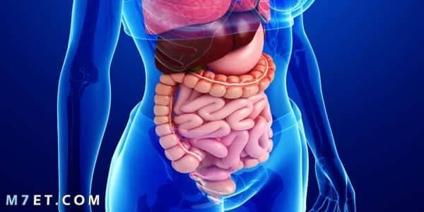 اعراض سرطان القولون عند النساء