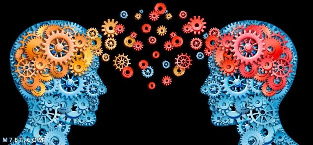 بحث عن علم النفس
