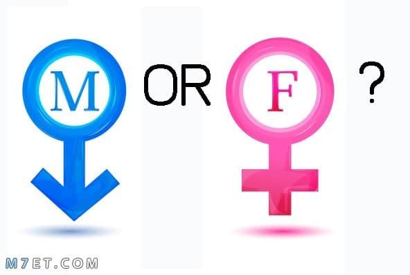 طريقة حسابية لمعرفة نوع الجنين