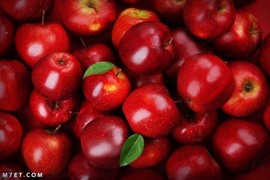 فوائد التفاح الاحمر قبل النوم