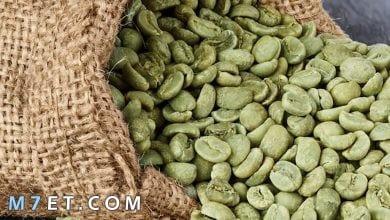 Photo of فوائد القهوة الخضراء للجنس والشعر