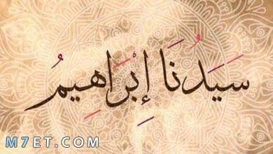 Photo of أهم معلومات عن سيدنا إبراهيم