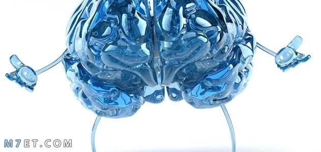 كيفية تقوية ذاكرة الإنسان