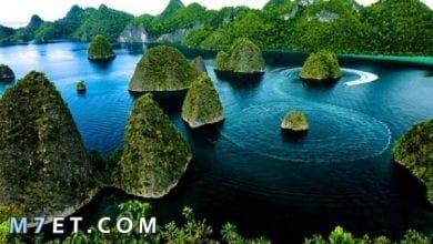Photo of تأشيرة السفر الى اندونيسيا ومتطلباتها