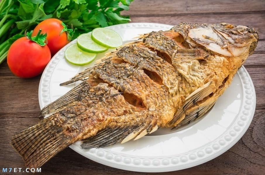 تفسير حلم اكل السمك مع الرز