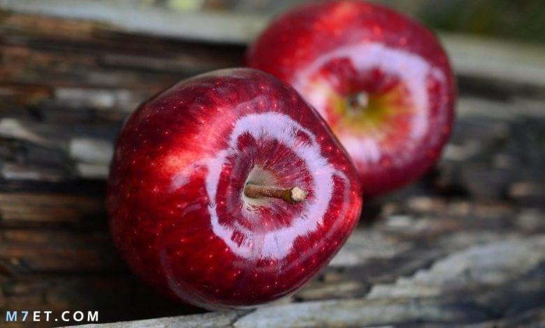هل اكل التفاح ليلاً مضر