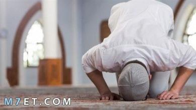 Photo of تعريف الصلاة لغة واصطلاحا وأهميتها