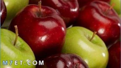 Photo of كم تفاحة ناكل في اليوم للاستفادة من فوائدها