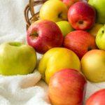 هل اكل التفاح في الليل يزيد الوزن أم ينحف وما هي فوائده الصحية