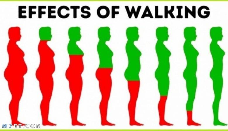 ما هى فوائد المشي