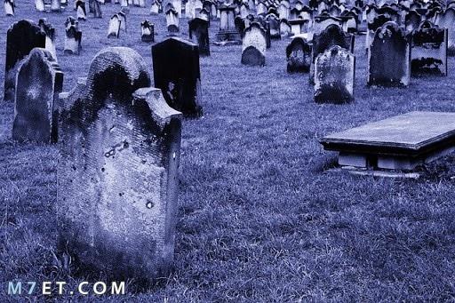 تفسير رؤية شخص يموت ثم يعود للحياة