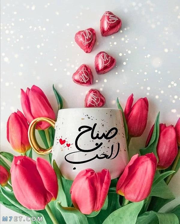 صباح الحب والخير لحبيبتي