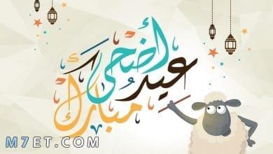 Photo of موعد عيد الاضحى 1441 في السعودية