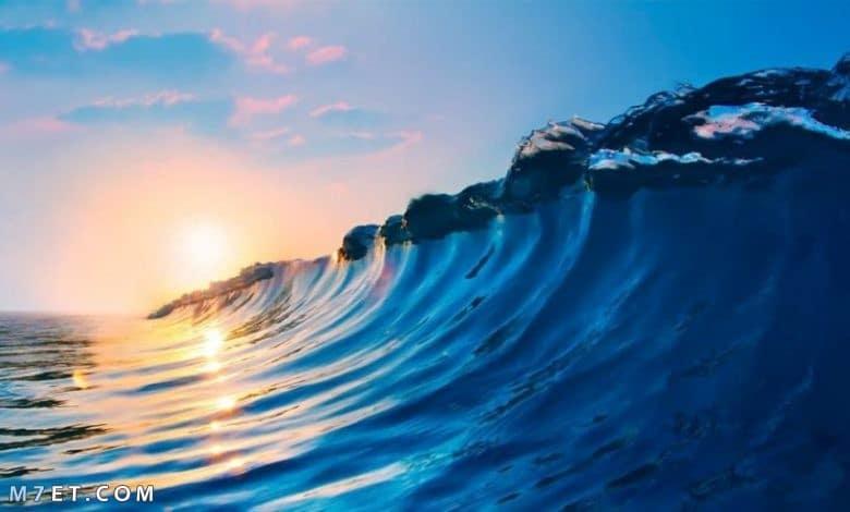 ما هي أكبر المحيطات في العالم