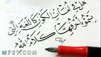 Photo of عبارات جميلة عن اللغة العربية واجمل عبارات قصيرة