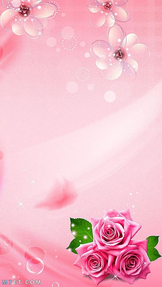 سكرابز للورد الوردي