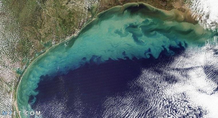 ما هو الخليج المائي وأين يقع