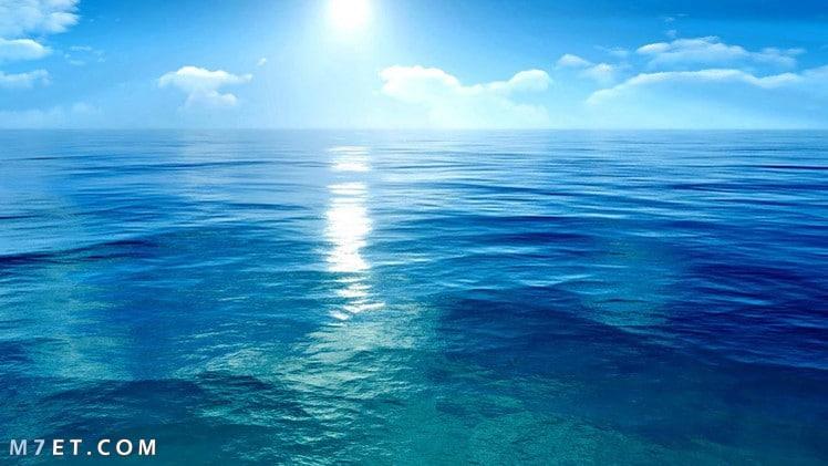 المحيط الهادئ
