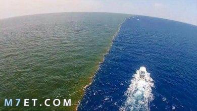 Photo of ما هو بحر الظلمات