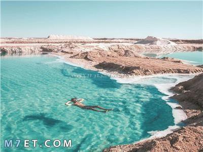 بحيرات مصر الطبيعية