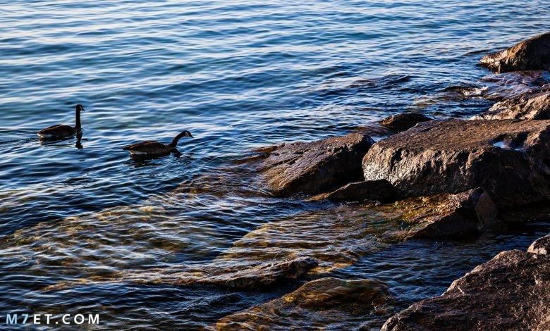 أكبر بحيرة في العالم بالصور
