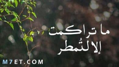 Photo of اجمل الخواطر والحكم للفيس بوك