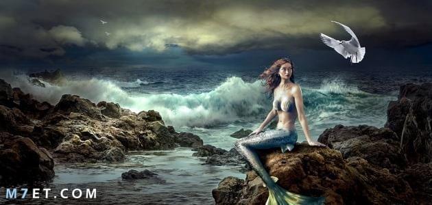 ما هي حورية البحر