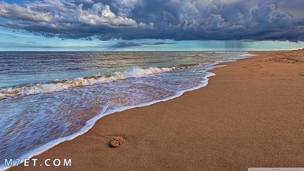 فوائد رمل البحر