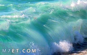 Photo of كيف يتكون زبد البحر
