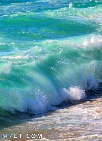 كيف يتكون زبد البحر