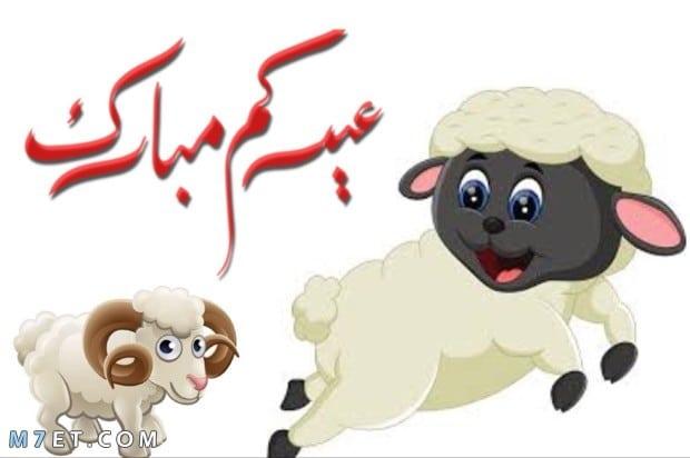 اجمل صور عيد الاضحي وخروف العيد