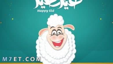 Photo of اجمل صور ورمزيات عيد الأضحى المبارك 2021