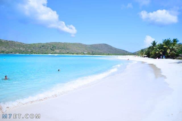 شاطئ فلامينجو