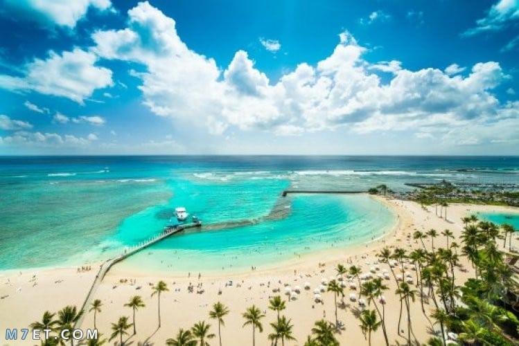 شاطئ وايكي