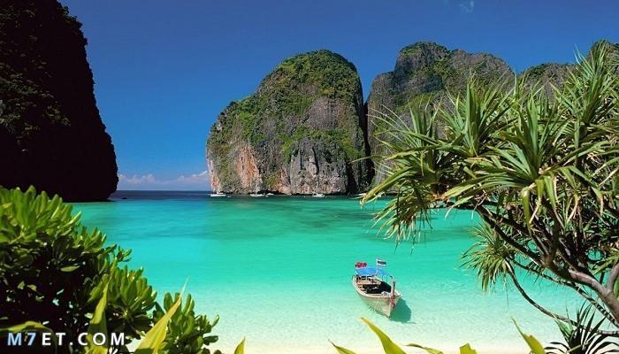 شاطئ مايا