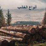 أنواع الخشب واستخداماته المتنوعة وأفضل أنواع الخشب المقاوم للماء